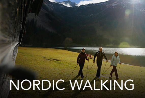 GABEL_NORDIC_WALING_POLES